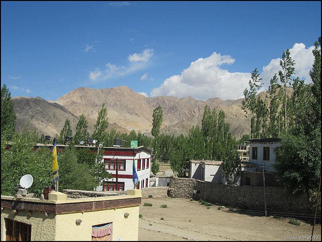 leh ladakh (62)