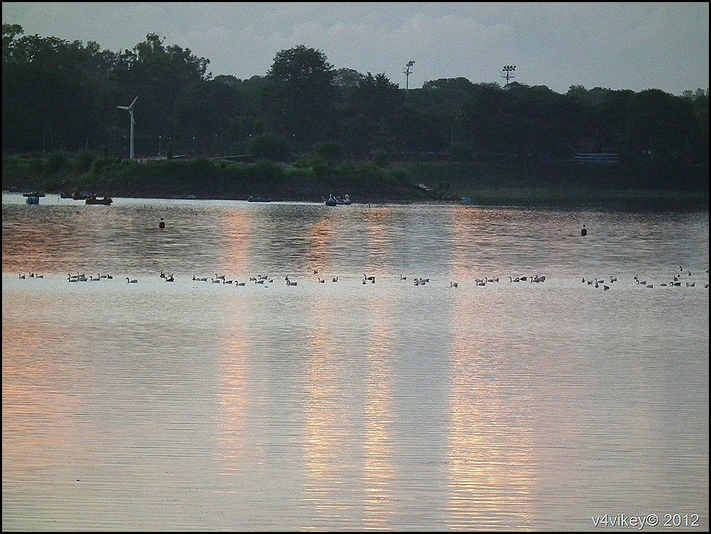 Sukhna Lake - Chandigarh